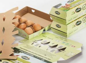 eggbox 10er Hofer Goldland/Freiland