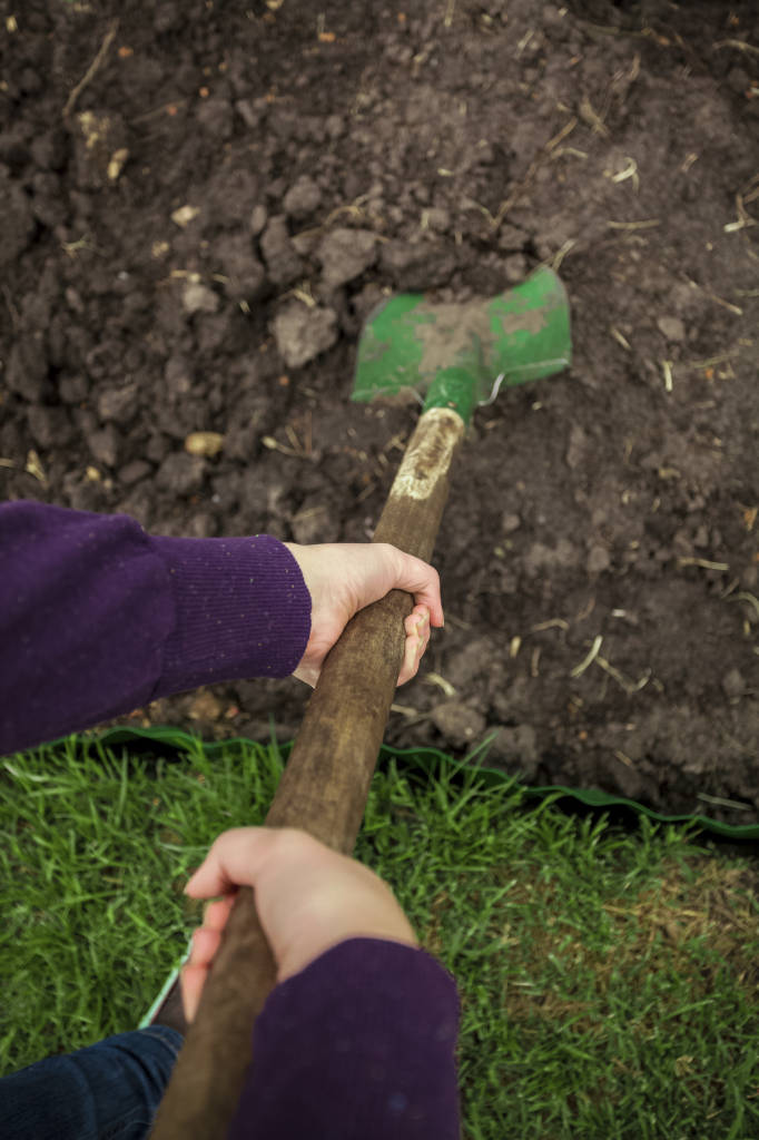 photo of women hands digging soil with shovel