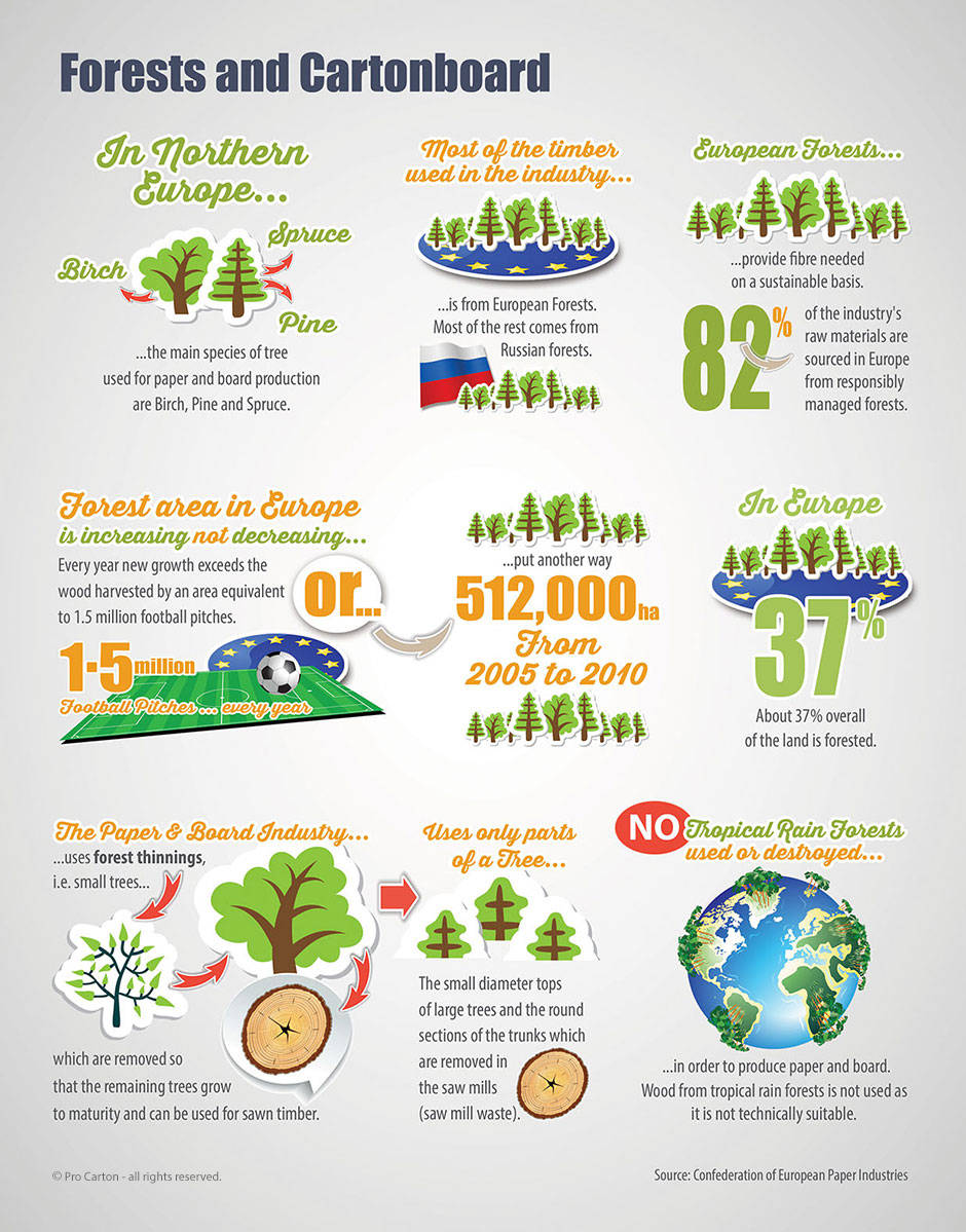 Facts-about-Forests-v2