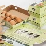 Volume Market: eggbox 10er Hofer Goldland/Freiland