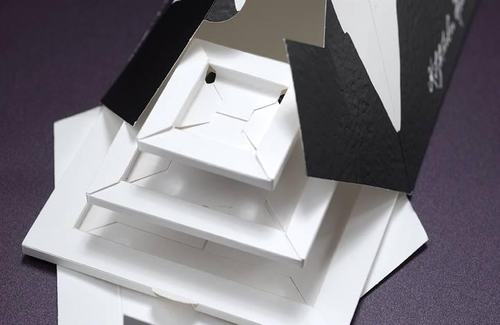 Mayr-Melnhof Packaging Austria GmbH 2