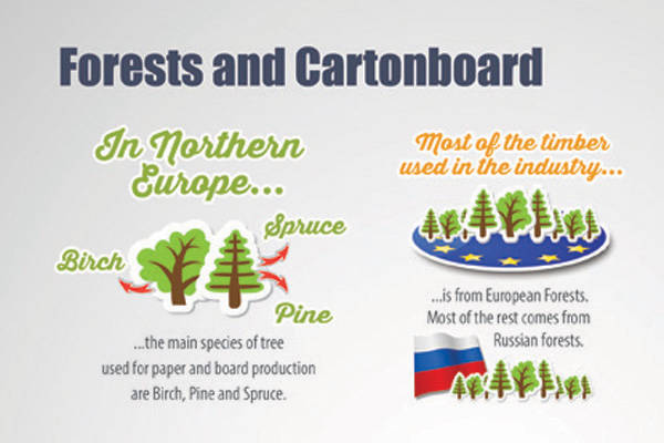 Infografik 2: Forests and Cartonboard