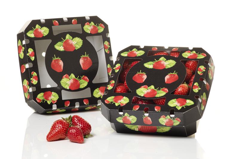 Saica Fresh Pack Tray