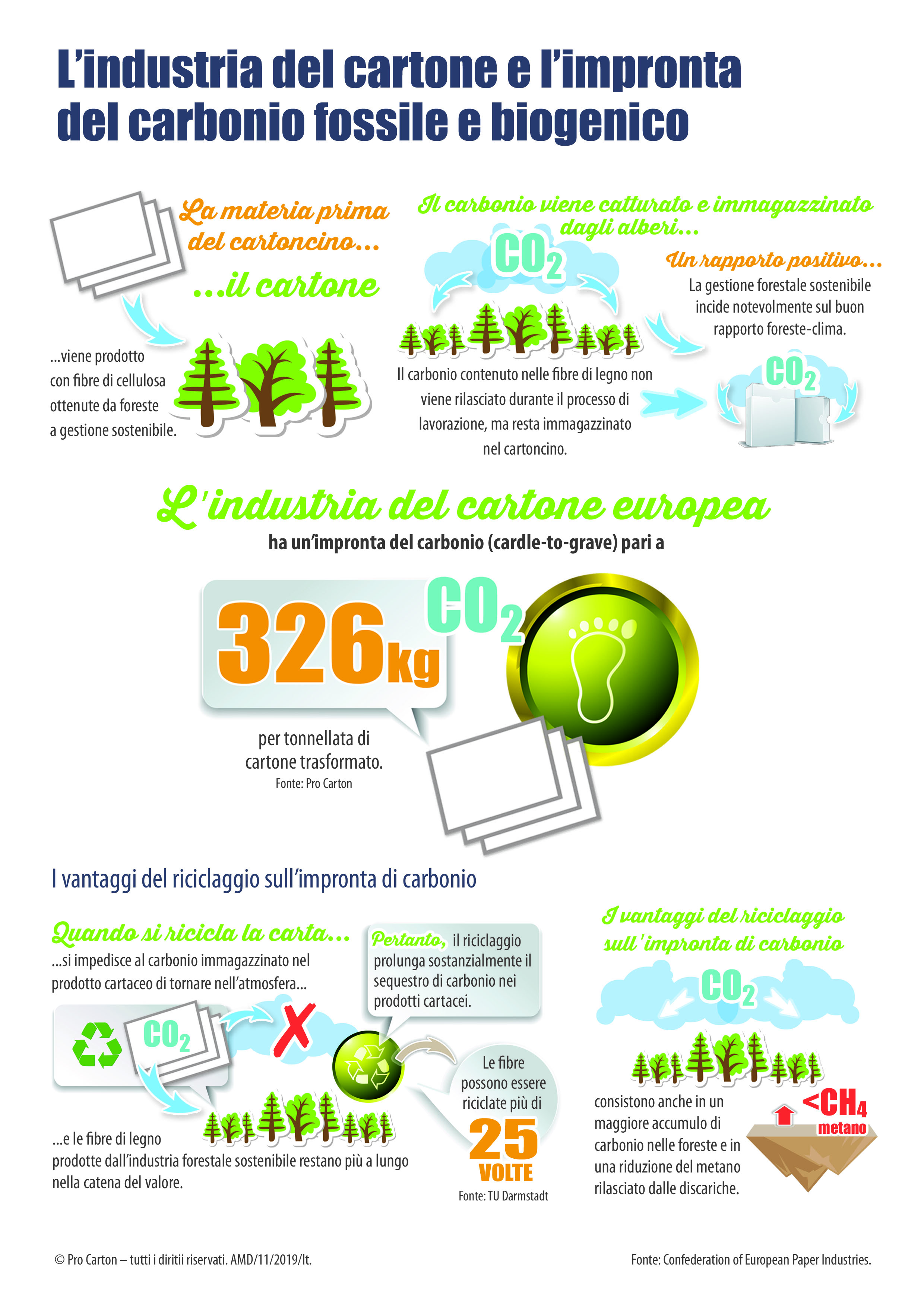 Pro Carton Environmental Infographics