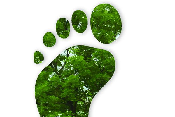 Eccellente risultato per l'impronta di carbonio