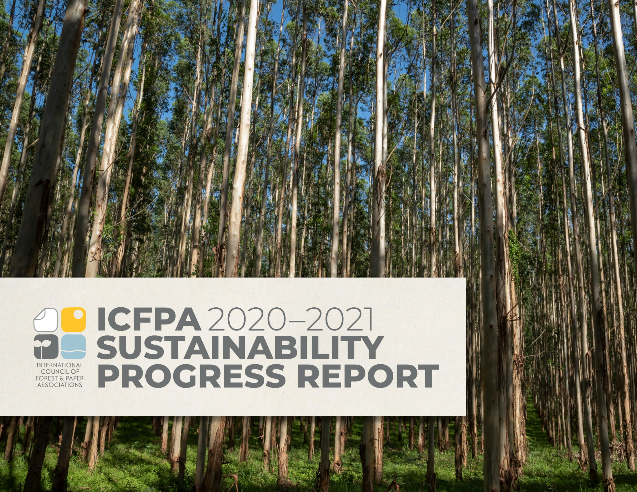 Forest Sustainability Report